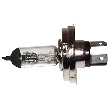 Glühlampe, Hauptscheinwerfer -- JP GROUP, Spannung [V]: 6...